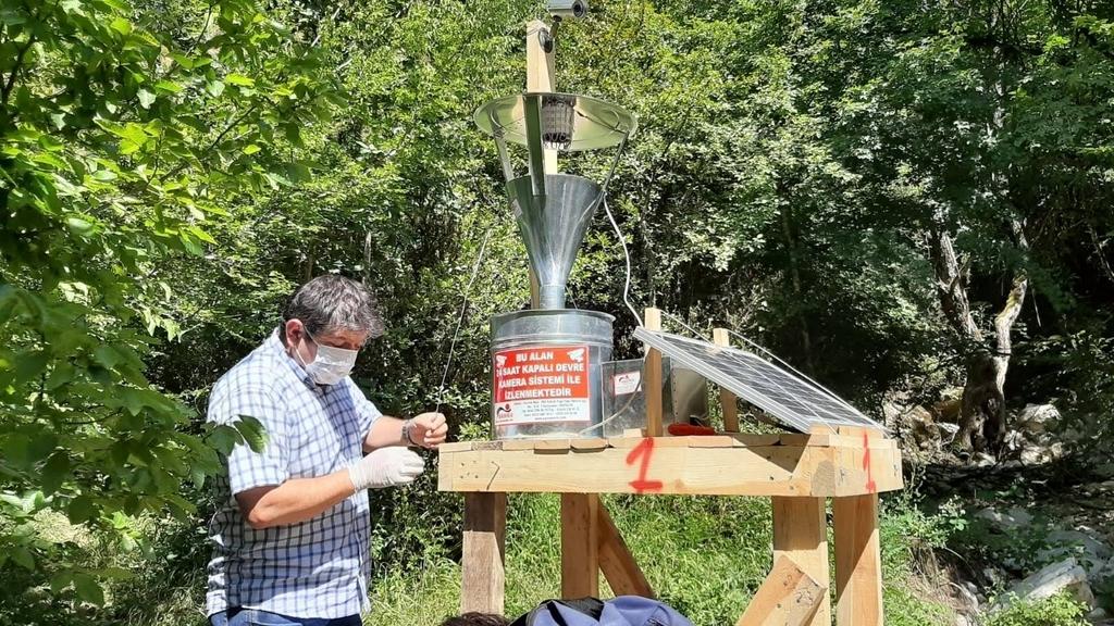 Küre Dağları Milli Parkı'nda Şimşir Ağaçlarının Korunmasına Bartın Üniversitesi Destek Oluyor